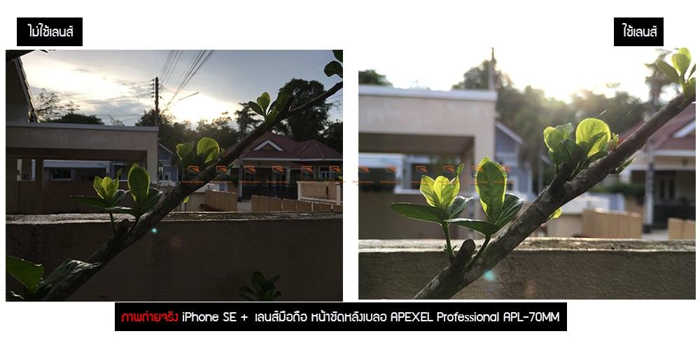 เลนส์มือถือ หน้าชัดหลังเบลอ APEXEL Professional Phone Lens Portrait lens ภาพถ่ายจริง-5