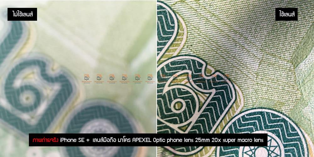เลนส์มือถือ มาโคร APEXEL Optic phone lens 25mm 20x super macro lens รีวิว ภาพถ่ายจริง-6