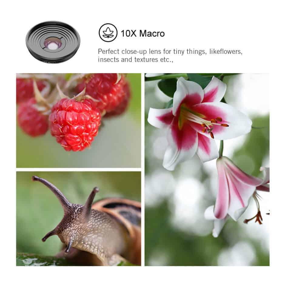 Mobile macro lens APEXEL HD 10X - Sample lens works